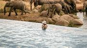 Four Seasons Serengeti Tanzania Pool ATW-20